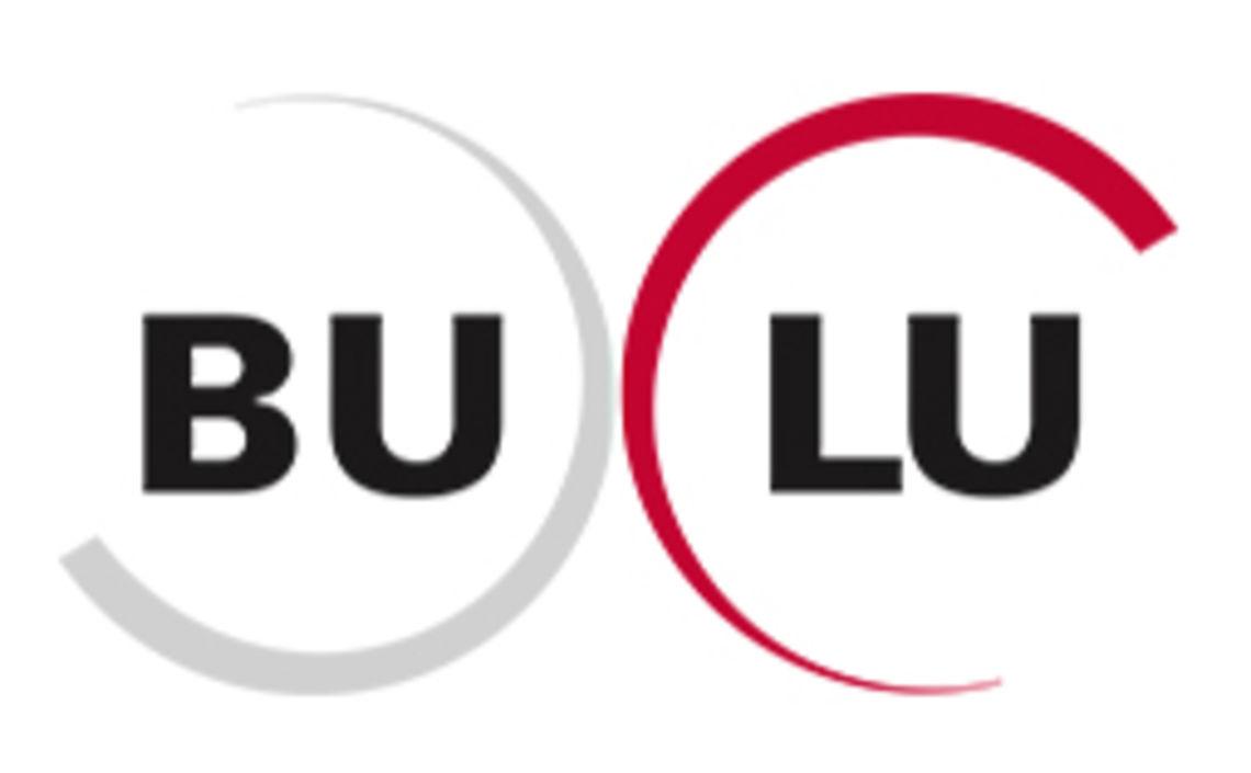 Bulu - Logo